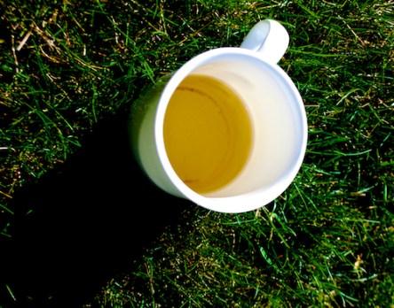 TeaMug4_Grass
