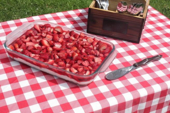 Moonshine in a Teacup| Strawberry Pretzel