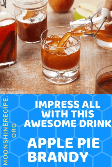 Apple Pie Brandy Cocktail Drink Recipe 1