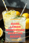 Basil Lemon Moonshine Recipe | Basil Lemon Cocktail Recipe
