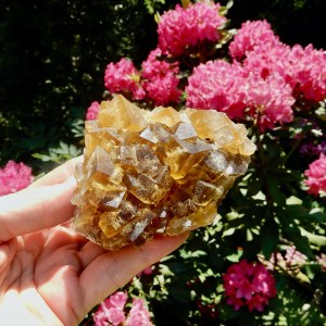 Fluorite Golden