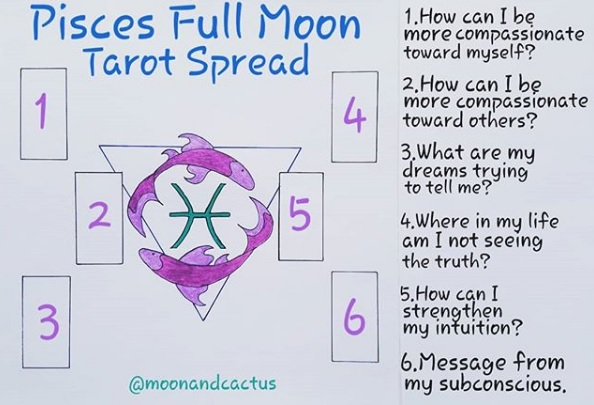 pisces full moon moon and cactus
