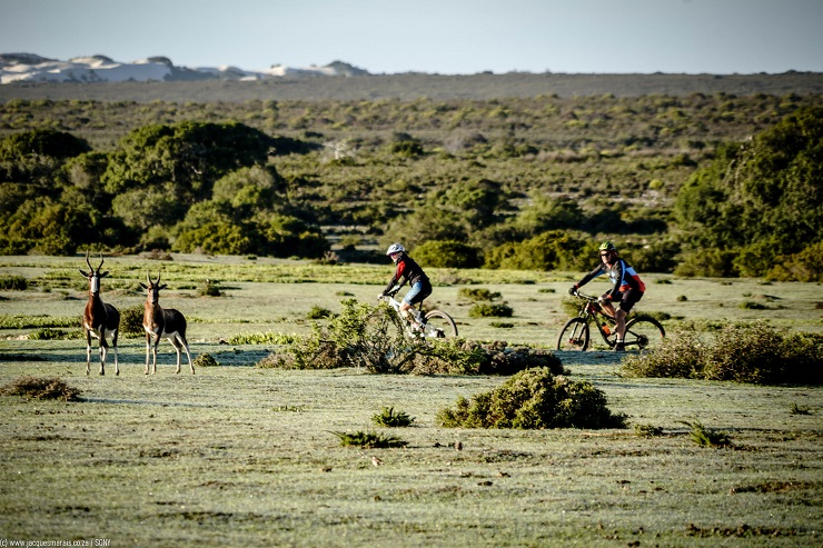 This year's De Hoop Vlei MTB Experience will offer a pristine getaway weekend filled with untamed and unspoilt mountain bike trails and miles of breath-taking ocean views. Photo: Jacques Marais