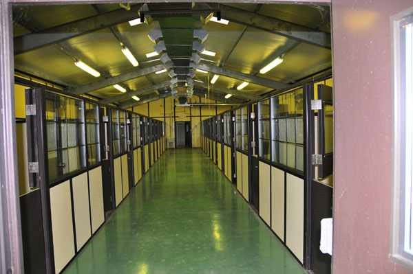 Introduction To Kennel Design–Facilities