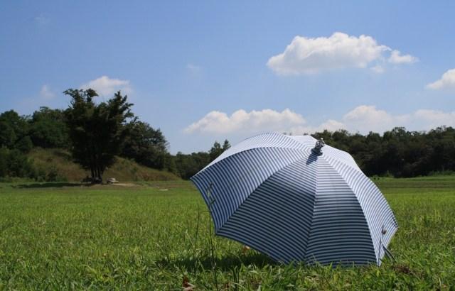 男性の日傘人気はそろそろ定着?売れ行き好調は折りたたみタイプ