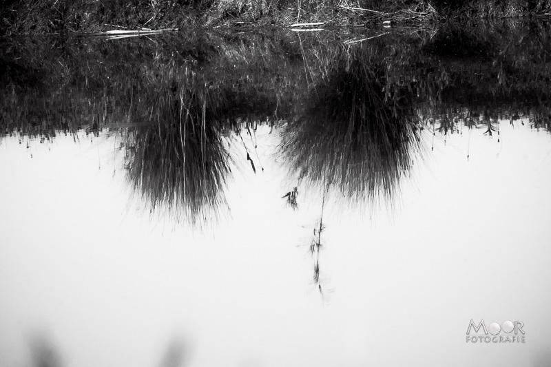 Water fotograferen - reflecties