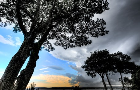 moorings-oceanfront-rv-resort-images (35)