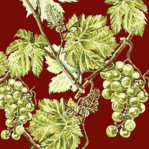 CoralBloom Tablecloth Cotton Vine Leaves on Red