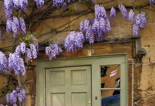 flores lilas puerta verde casasugar.com