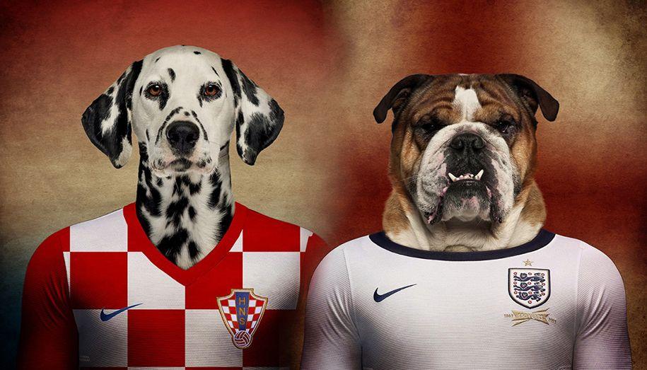 Una selección de perros con camisetas del Mundial