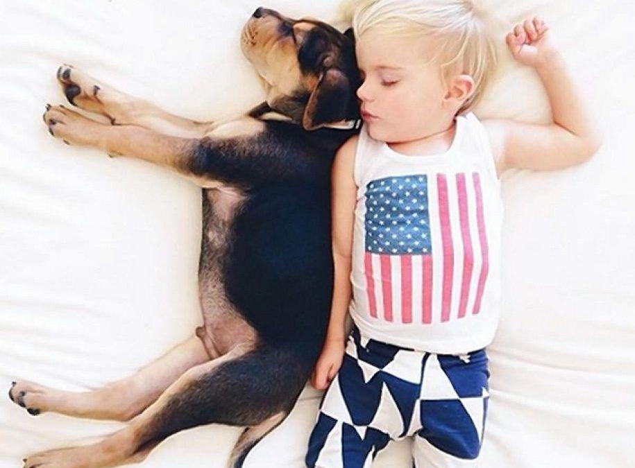 Fotografías con perros: la tierna amistad de Theo y Beau