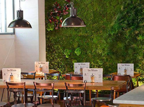 interior decoracion antural restaurante la musa la latina