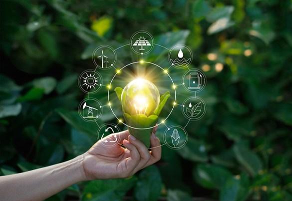 galardones sostenibilidad empresa