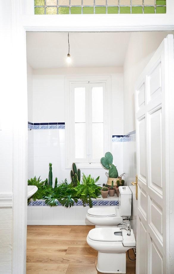 baño antiguo con plantas