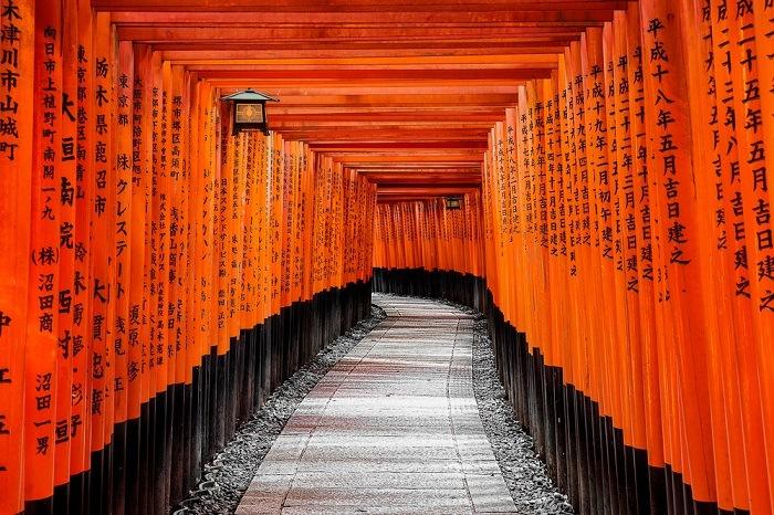 viajar desde casa santuario japon