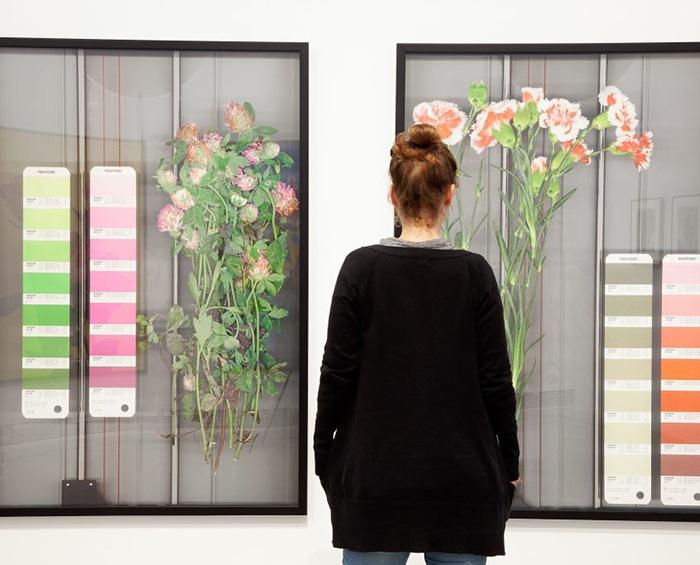 «Botánicas» la exposición que nos pondrá de nuevo en contacto con la naturaleza