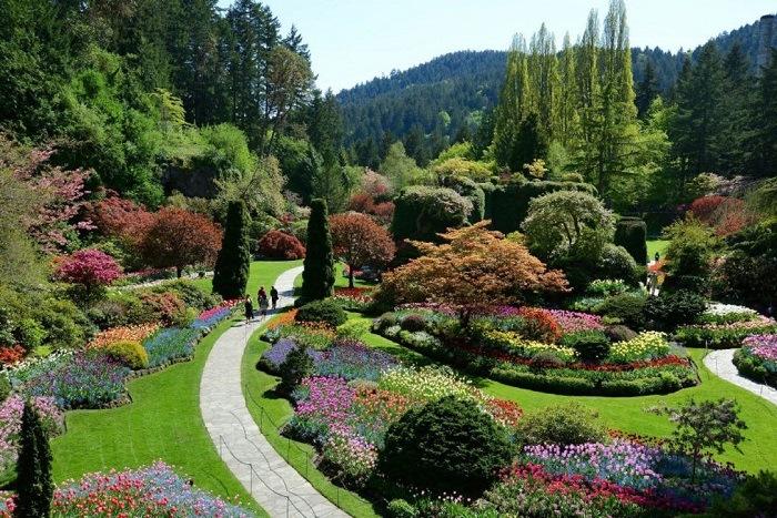 jardin botanico en sudafrica