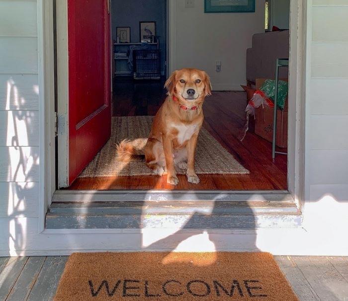 Cocooning, la tendencia en alza para disfrutar de tu hogar
