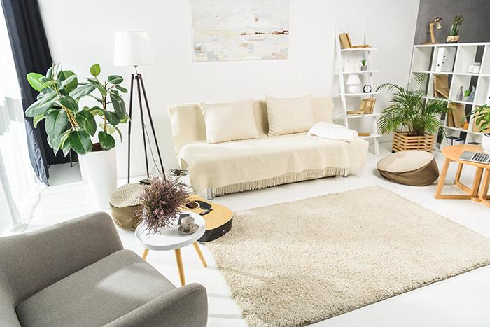 sala de estar con diseño biofilico plantas