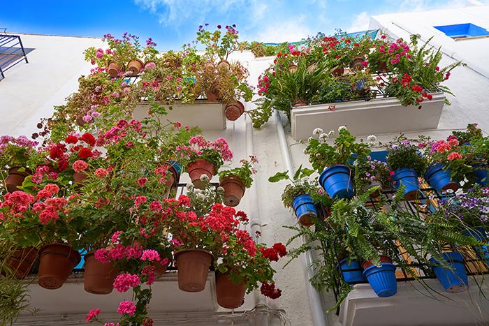 Flores coloridas en maceteros colgantes en balcones pequeños