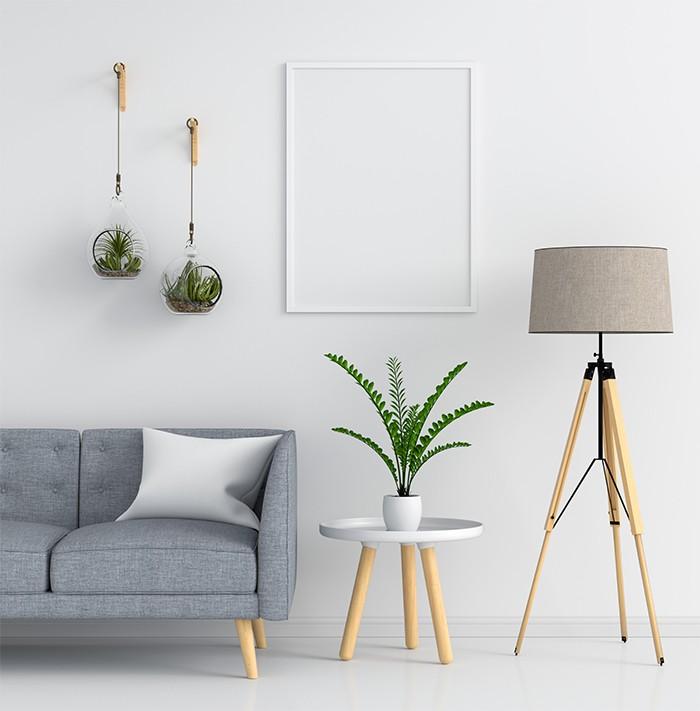 salón decorado con lámpara y plantas colgantes