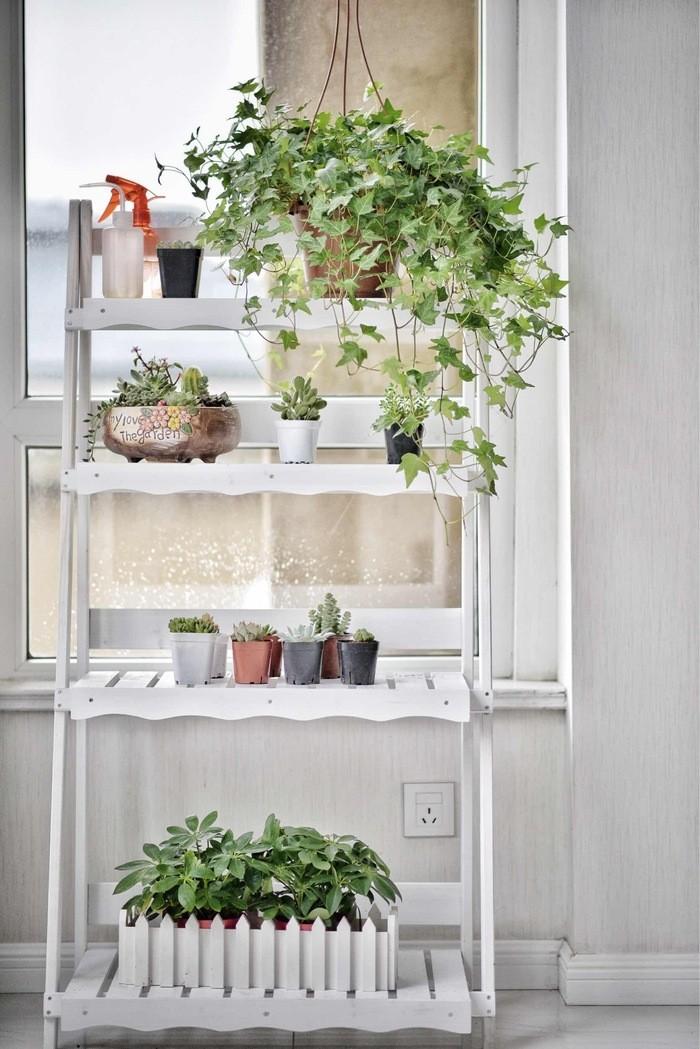 decoración estantería con plantas