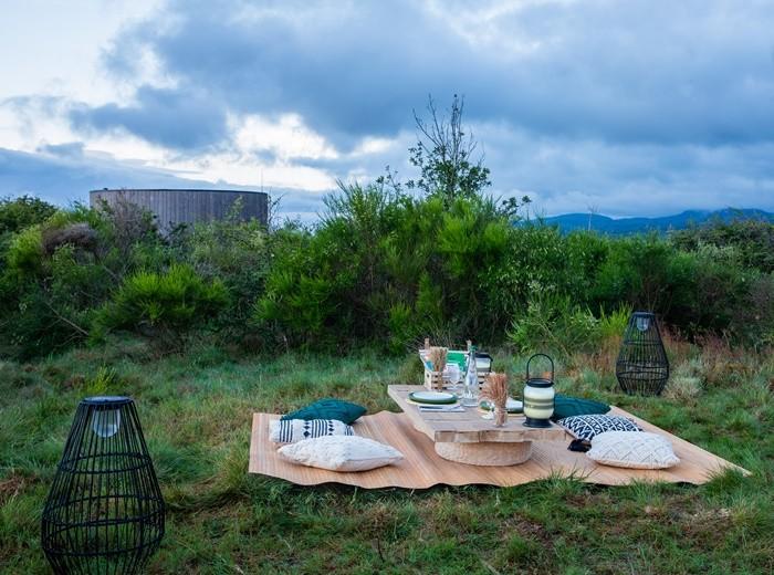 picnic cojines lamparas natural