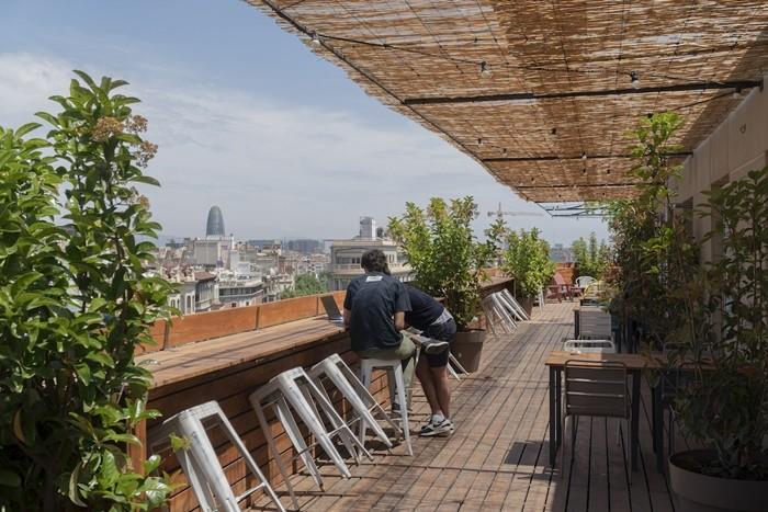 exterior plantas sillas vistas
