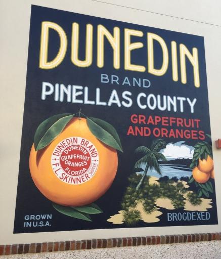 Dunedin Brand Oranges