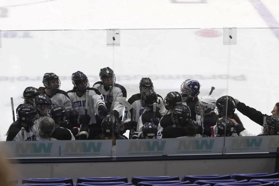 girls hockey crowd