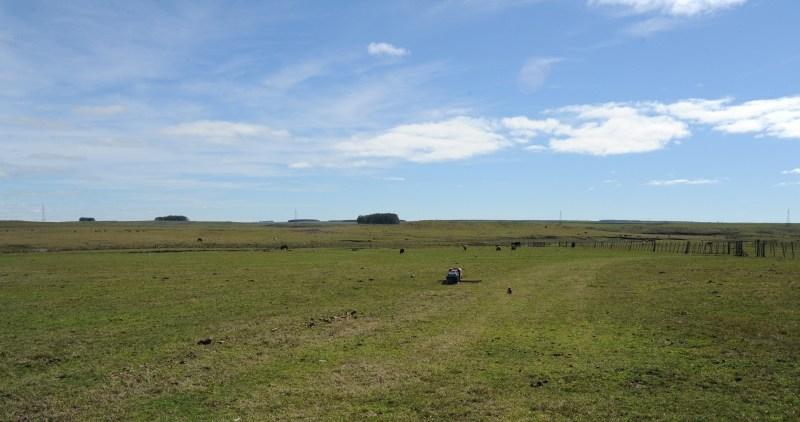 Federación Rural pide que Colonización no compre más tierras y mejore eficiencia