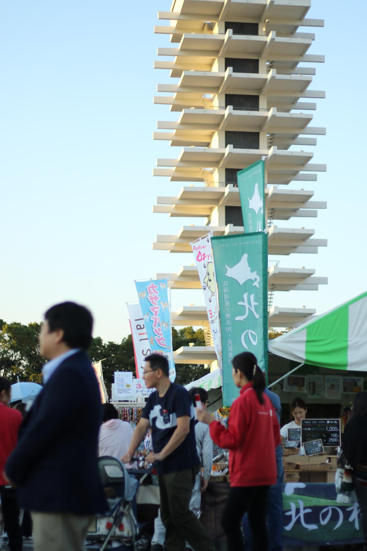 モラキジドッグ 駒沢公園わんわんカーニバル2016