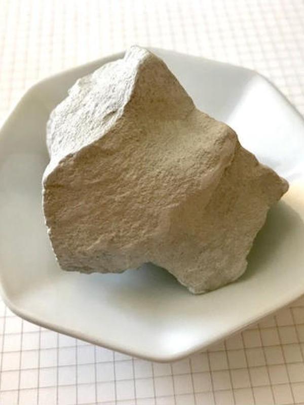 モラキジドッグ 犬の歯キレイ