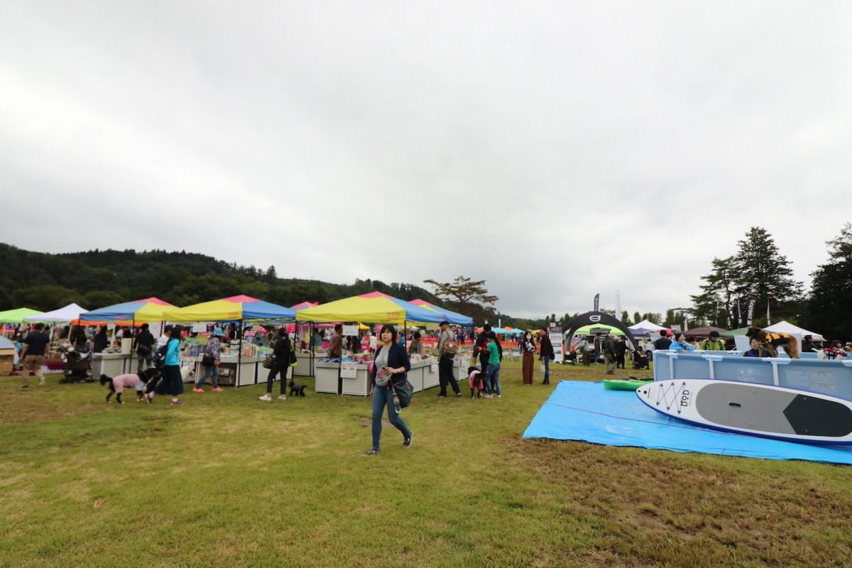 みちのく公園ドッグフェスティバル2018 モラキジドッグ