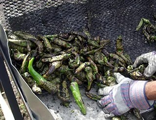 Roasted Green Chile Peppers