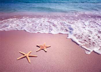Short Stories about Making a Difference - Starfish Moral Inspirational Story