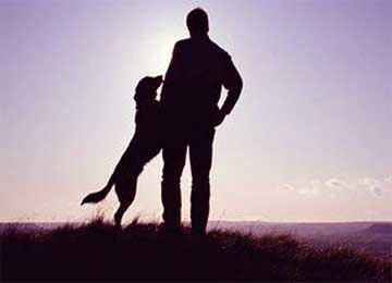 Man and Dog Friendship - Never Abandon Friend Beautiful Story with Moral for Kids