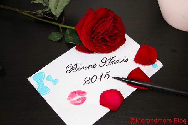2015 Mors Blog [640x480]