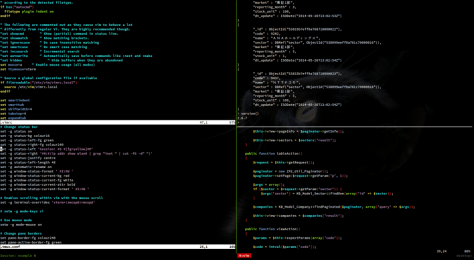 Tmux in action. Two vim sessions and a MongoDB console.