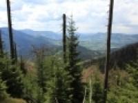 Národní přírodní rezervace Mazák.