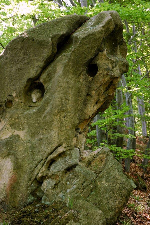 PP Maršava — zvětrávání lukovských vrstev vytváří bizarní tvary pískovců.