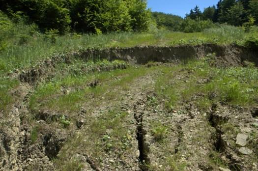 Sesuv způsobený zatížením koruny lesní cesty s nedostatečným odvodněním.