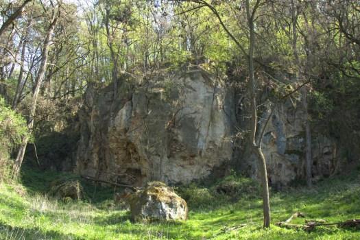Menší pískovcové lomy v lese pod Ořechovem.