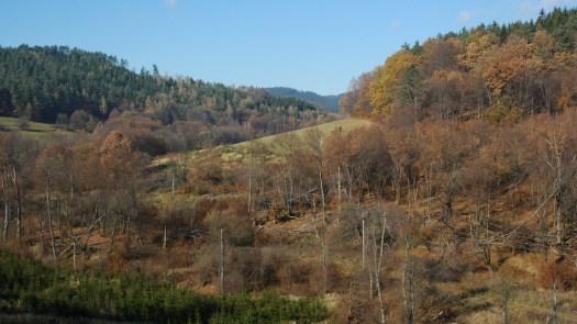 Údolí Smolinky před Smolinou.