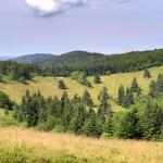 Valašská kolonizace moravských Karpat