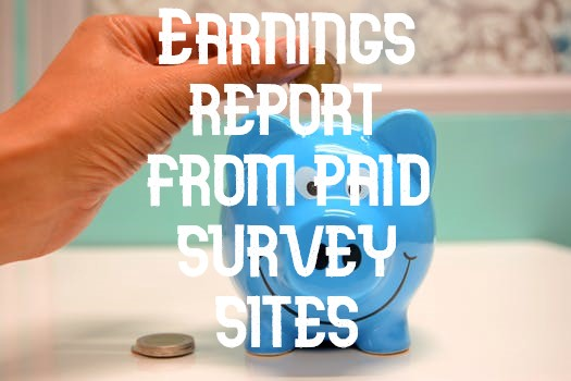 Earnings report from paid survey sites