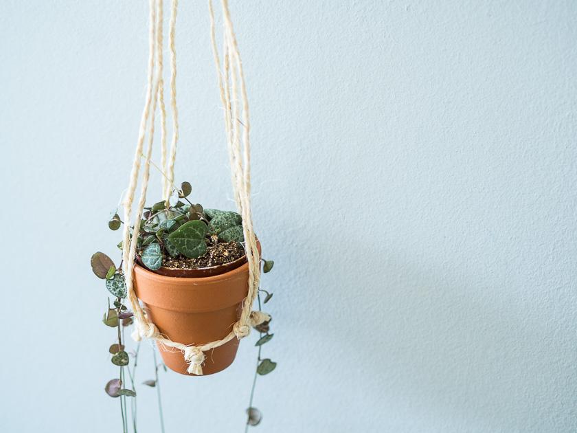 DIY Makramee Blumenampel_kleine Blumenampel