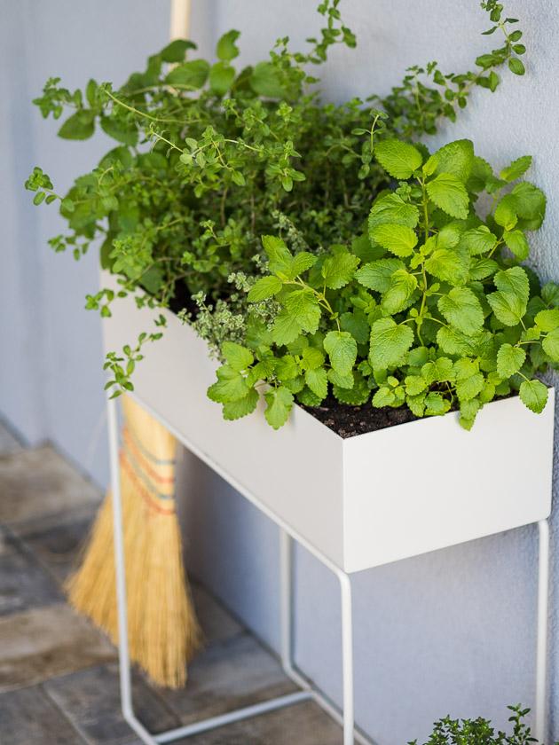 Haus Eingangsbereich mit Kindern_Plant Box Ferm Living