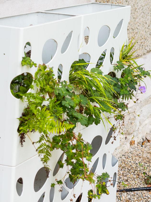 Gartenträume für Familien_Pflanzgefäß