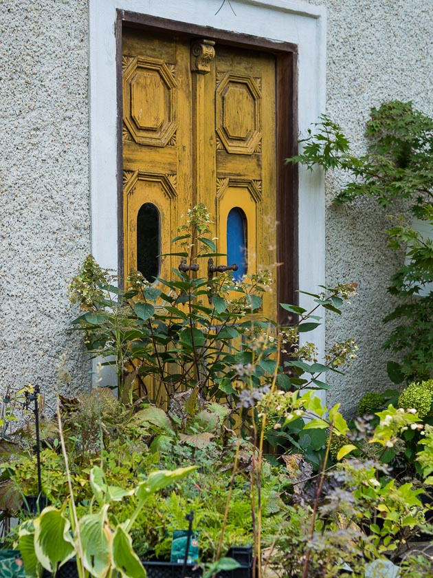 Gartenträume für Familien_Stauden
